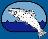 Bergeforsfisket logga